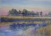 Expressive Landscapes (3)